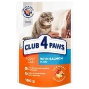 Club 4 Paws Premium Cat Salmon Jelly
