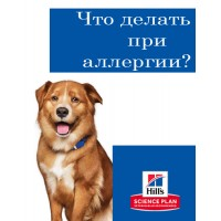 Как избавиться от аллергии у собак?