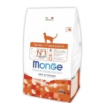 Monge Cat Senior