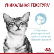 Royal Canin Sensory Feel (Ощущения) в желе