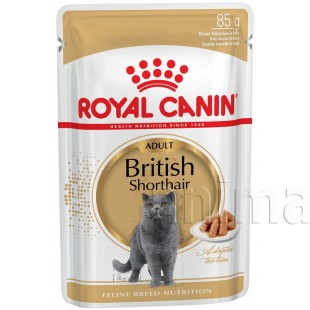 Royal Canin British Shorthair Adult gravy