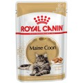 Royal Canin Maine Coon Adult gravy