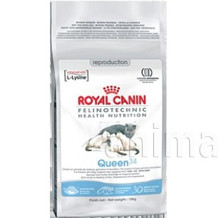 Royal Canin Queen