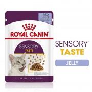 Royal Canin Sensory Taste (Вкус) в желе