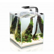 Аквариум Aquael SHRIMP SET SMART 10 BLACK