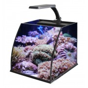 Трапециевый аквариум Haqos BELLY BOX 25, 11л