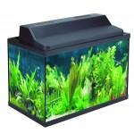Прямоугольный аквариум Haqos X-520, 40л