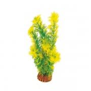"Растение Laguna 1998 ""Амбулия"" жёлто-зеленая, 200мм, (пакет)"