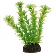 "Растение Laguna 1367 ""Амбулия"" жёлто-зеленая, 100мм, (пакет)"