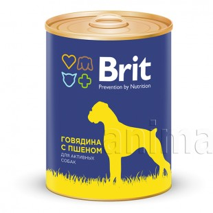 Brit Premium Beef & Millet