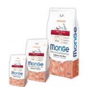Monge Dog Adult Mini Salmon and Rice