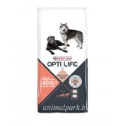 Opti Life Adult Skin Care Medium & Maxi Salmon&Rice