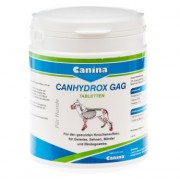 Кангидрокс ГАГ 60таб. (100гр.)