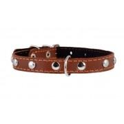 Ошейник Collar с синтепоном и украшением для собак, коричневый