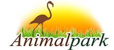 Зоомагазин Animalpark
